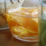 バナナ オレンジ キウイ 酵母